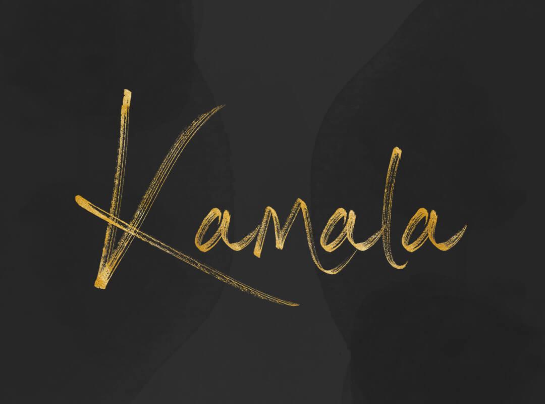 Kamela Harris shirts stickers